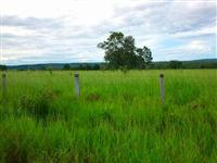 Fazenda com 500 hectares - Rochedo/MS – Ref. 666