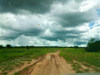 Fazenda com 1.200 hectares - Rio Negro/MS – Ref. 660