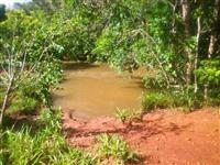 Fazenda com 531 hectares - Campo Grande/MS – Ref. 657