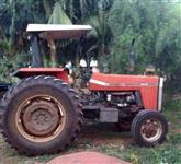 Trator Massey Ferguson 290 4x2 ano 94