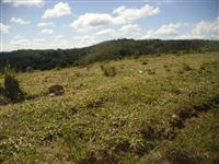 Fazenda em Ribeirão Branco (SP) com 1.945 alqueires