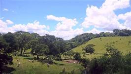 Fazenda no Estado de SP com 68 alqueires excelente para criação de gado