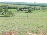 Sitio em Nhandeara SP
