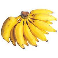 Vendo Bananas