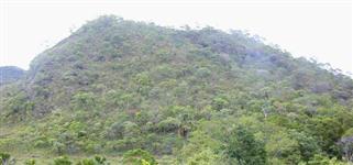 Cotas Reserva Ambiental Bioma Cerrado Compensação Ambiental Em Qualquer Estado