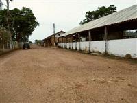 Sitio em Pirassununga