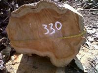 Compro madeira de teca, em toras ou blocos