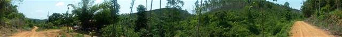 Fazenda Em Marabá