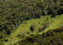 Área para Compensação Ambiental - Mata Atlântica