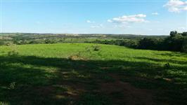 fazenda em martinho campos mg