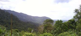 Fazenda 85,6 hectares
