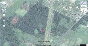 TERRENO DE 59,17 ha (591.700 m²)  COM PLANTAÇÃO DE AÇAÍ