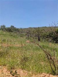 Ótima oportunidade propriedade rural em Rio Acima/MG
