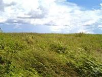 Fazenda em São Felix do Araguaia- MT