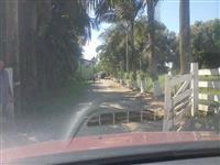 Excelente Fazenda de Gado em Araquari/ SC