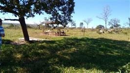 Fazenda em Corumbaiba-GO