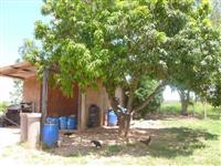 Fazenda Em Tiros Distrito Da Jaguára