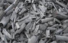 Carvão de Eucalipto