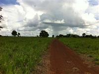 Fazenda barata em Jangada MT, com área de 1000 hectares na BR 163/364