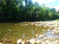 Reserva Legal – Mata Nativa no Bioma Mata Atlântica