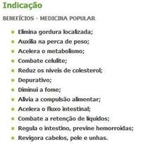 SEMENTES HIBRIDAS DE MELANCIA