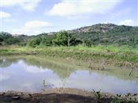 Fazenda Jaburu