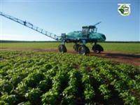 FAZENDA AGRICULTURA DE SOJA, MILHO E PECUÁRIA, GAÚCHA DO NORTE, MATO GROSSO