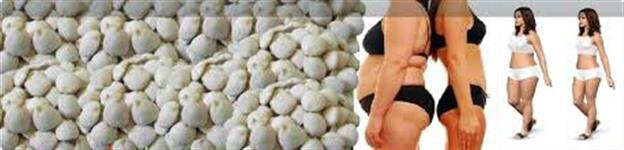 sementes de noz da india