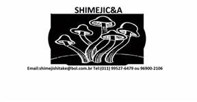 Vendo shimeji branco kg direto do produtor