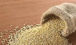 Quinoa Peruana