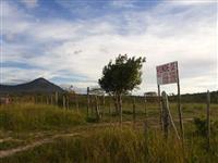 Arrendamentos de área para plantio de soja em Goiás