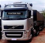Caminh�o  Volvo FH 460  ano 15