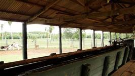 Fazenda de 2.071ha. Localiza na região de Bonito ms