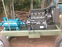 Motor de irrigação mwm 225
