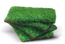 Fornecimento e aplica��o de grama em placa ou em rolo