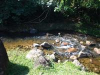 Sitio em Cachoeiras de Macacu - RJ