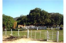 Fazenda em Francisco Sá-MG, com 265ha