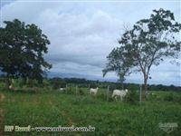 Fazendas no Rio Grande do Sul