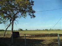 Fazenda em Cascavel  - PR com 1512,50 hectares.