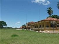 FAZENDA NA BEIRA DO RIO ARAGUAIA (cod: 54590)
