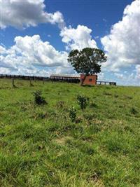 Fazenda no Paraguai em Fuerte Olimpo - PY com 18.000 ha.
