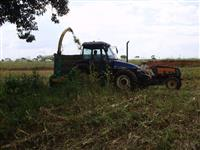 Trator Ford/New Holland TL 85 E 4x4 ano 10