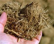 Bagaço de Cana - Biomassa