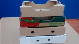 Caixas em papelão para bolos, salgados. doces ,pizza,maleta e hortifruti
