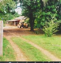 Sitio em Tangara da Serra MT