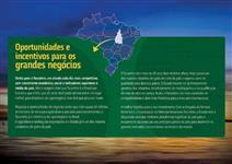 Fazendas no Tocantins