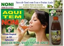 SUCO DE NONI COM UVAS E FRUTAS AZUIS