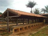 Fazenda 48 hectares a 45 km de Paracatu-MG