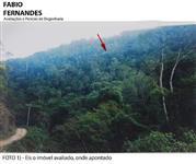 Reserva Florestal Miracatu-SP