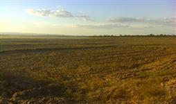 Fazenda GO com 6.000 hectares